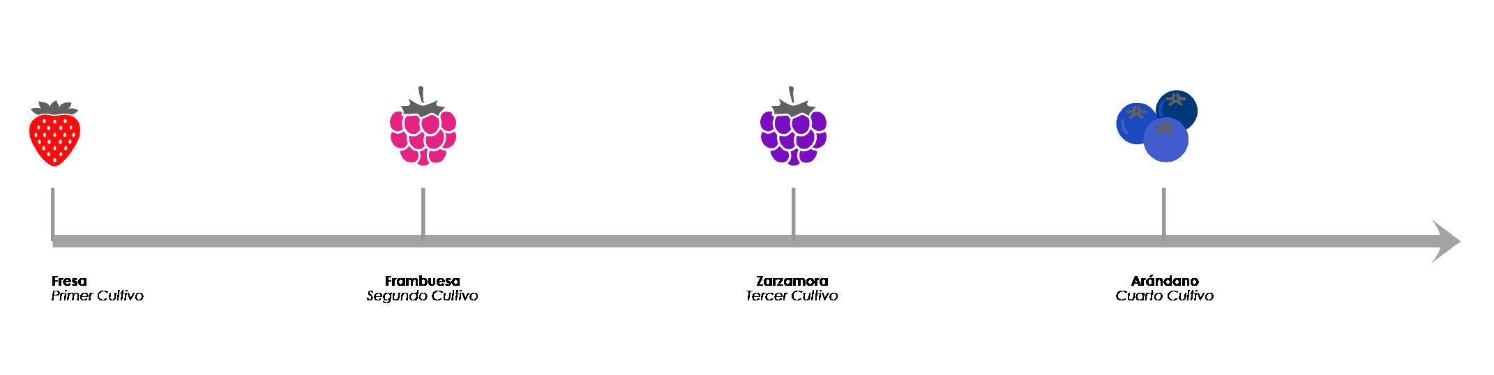 Linea de cultivos TunnelTek